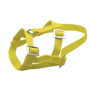 Adjustable nylon sheep halter