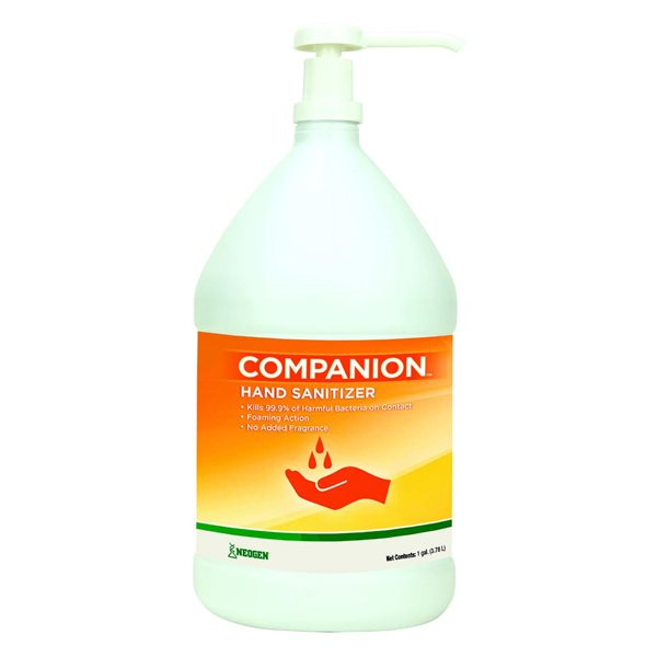 COMPANION hand sanitizer with pump 1 gallon