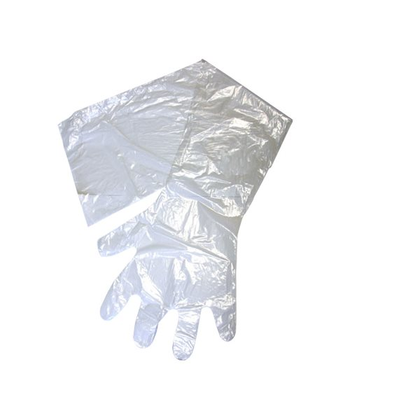 Gants OB / IA IDEAL transparent, 1.25 mil. emb / 10